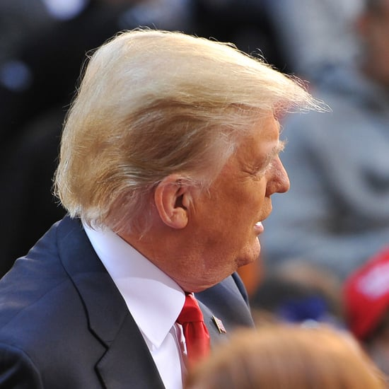 Is Donald Trump's Hair Real?