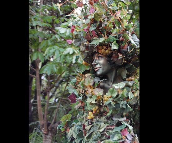 9. Tree Lady