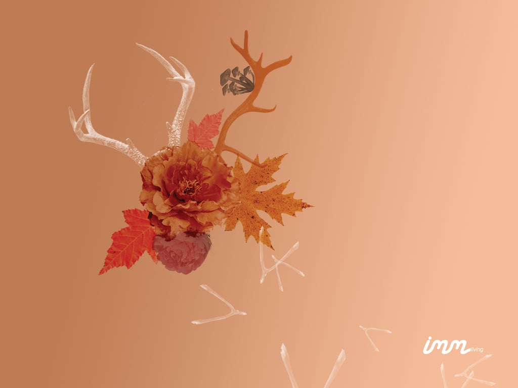 Floral Collage by imm Living