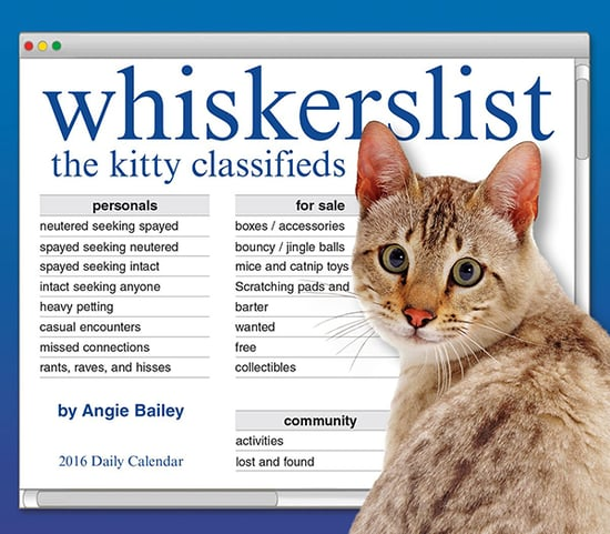 10 Awesome Cat Calendars to Get You Through 2016
