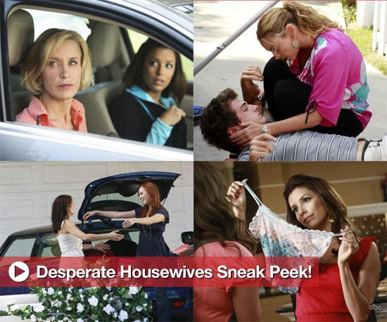 New Promo Photos and Spoilers From Desperate Housewives Season Six