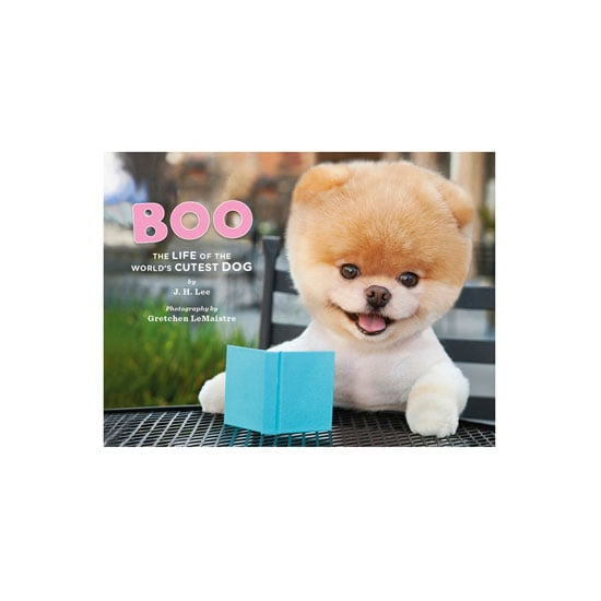 """""""Boo: The World's Cutest Dog"""", $16.95, Random House at General Pants"""