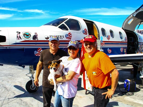 WATCH: Wings of Rescue Flies 20,000th Pet One Step Closer to Forever Home