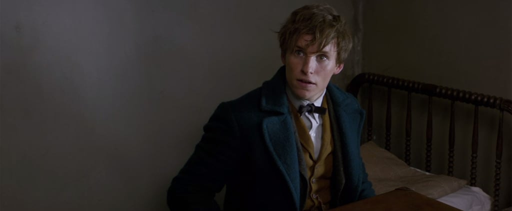Fantastic Beasts and Where to Find Them: Meet the Whole Cast