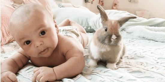 The Unspeakably Adorable Bond Between This Baby And His Pet Bunnies