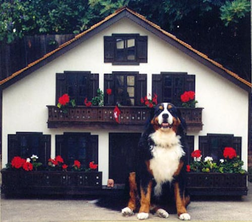 This (New) Home: La Petit Maison