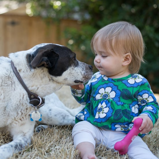 Photos of Babies and Puppies