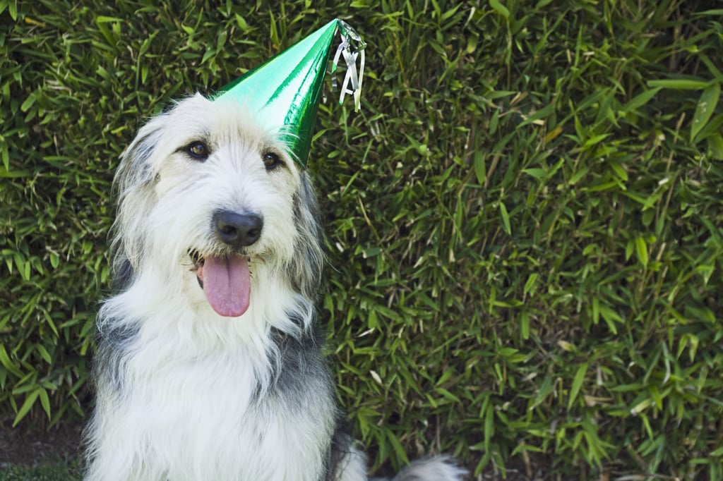How About Birthday Hats?
