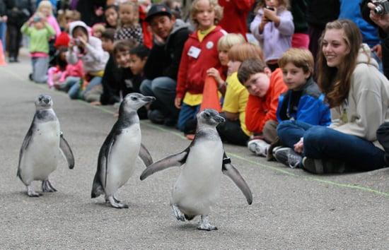 Parenting Blogs on OnSugar 2010-08-15 04:00:41
