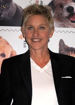 Ellen DeGeneres Quits American Idol 2010-07-29 17:33:06