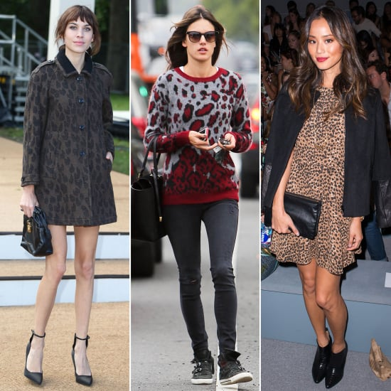 You Can, and Should, Wear Leopard Print Every Day
