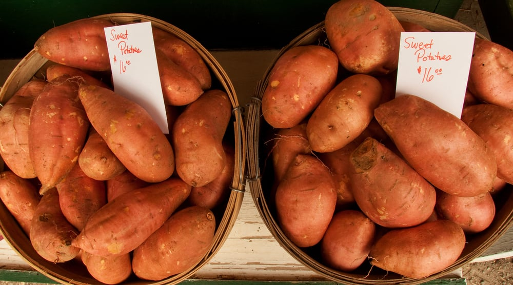 The Fall Food: Sweet Potatoes