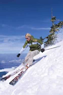 Skiing Defined