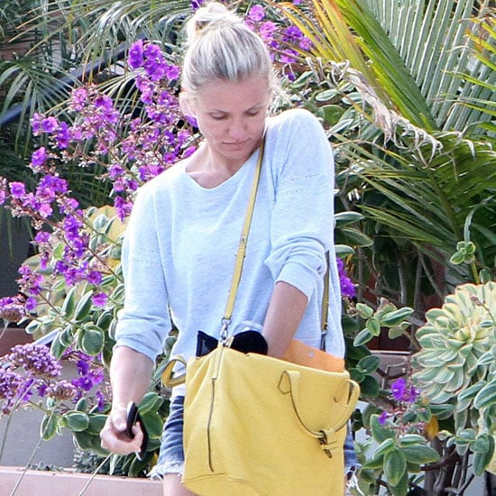 Cameron Diaz Carries a Yellow Bag | Pictures