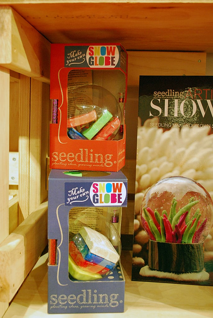 Seedling Make Your Own Snow Globe