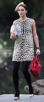 Leighton Meester in Leopard D&G Dress