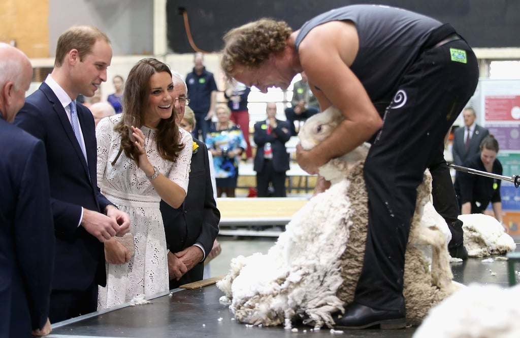 When they watched a shearing demonstration.