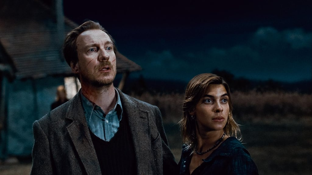 Lupin and Tonks, Harry Potter