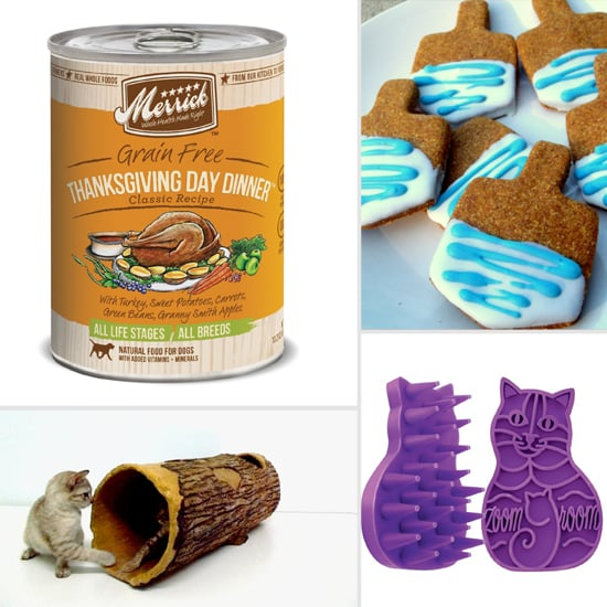 November Must Haves For the Purrfect Pet