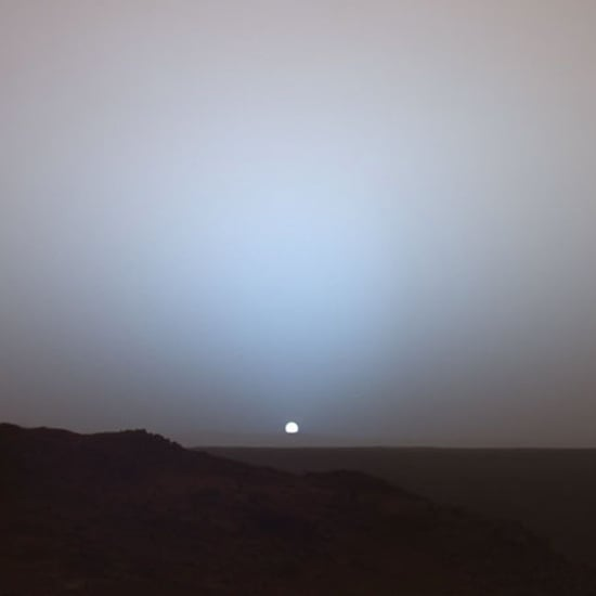 Vine of Mars Sunset