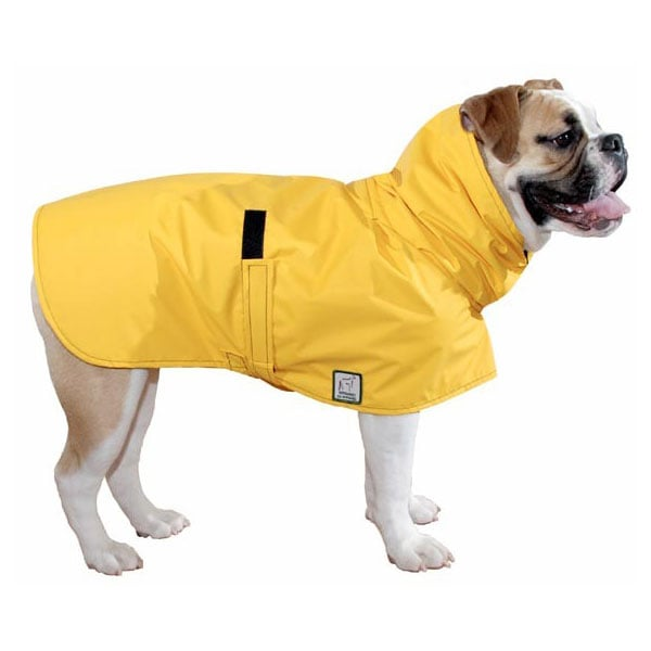 English Bulldog Rain Coat, $64
