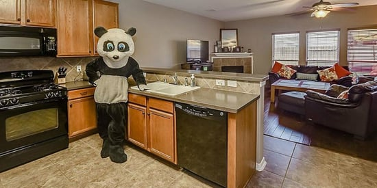 Realtor Poses As Panda In Listings Because Why Not?