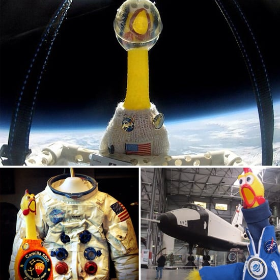 Geeks We Love: Camilla, the Space-Faring Rubber Chicken