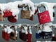 Love locks in Lübeck, Germany, were covered in snow.