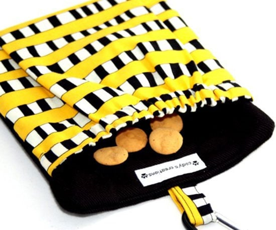 Pocket Treat and Training Pouch