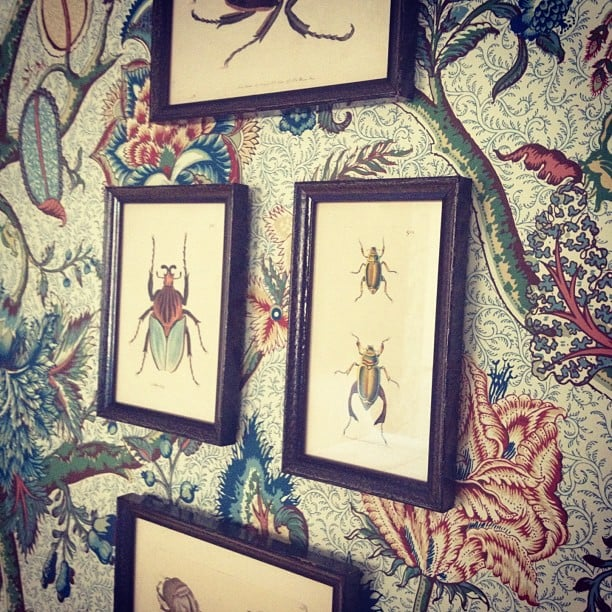 Art Inspired by Wallpaper
