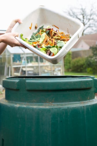 Do You Have a Compost Bin?