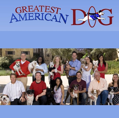 Meet the Contestants of Greatest American Dog
