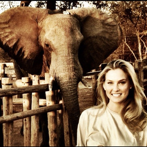 Bar Refaeli took a magical trip to Africa where she met up with a new friend.