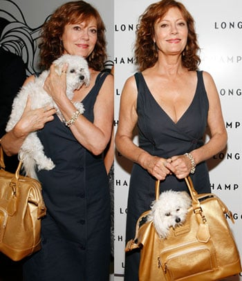 Celeb Redo: A Better Doggie Bag For Susan Sarandon