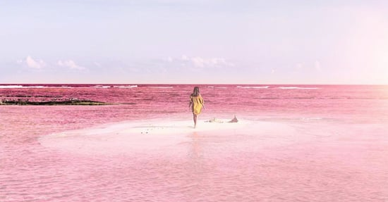 Why Mexico's Unbelievable Pink Lagoon Belongs on Your Bucket List