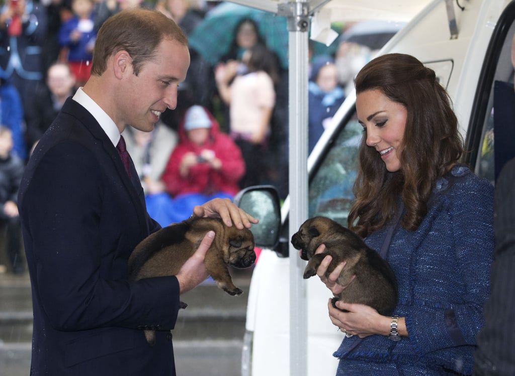 Aww! Prince William and Kate held puppies during a visit to the Royal New Zealand Police College in Wellington in April 2014.
