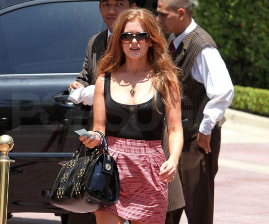 Photo Slide of Isla Fisher Going to a Movie in LA