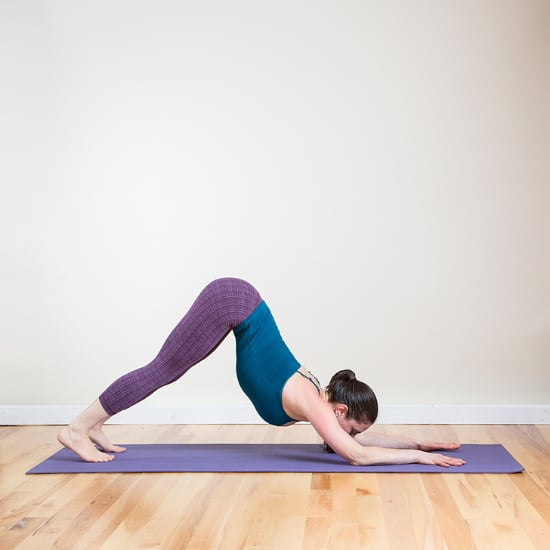 Dolphin Dive Arm and Ab Exercise