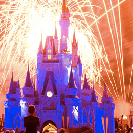 Lil Links: 65 Things You Must Do and See at Disney World