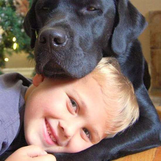 """Jedi the Dog Helps His 7-Year-Old """"Master"""" Luke Fight Type-1 Diabetes"""