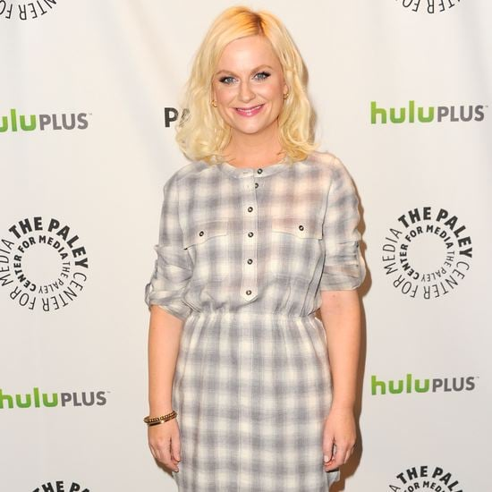 Amy Poehler Parks and Recreation PaleyFest (Video)