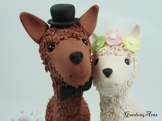 For the Llama Lovers