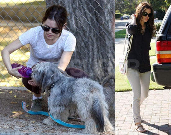 Photos of Rachel Bilson in Los Angeles