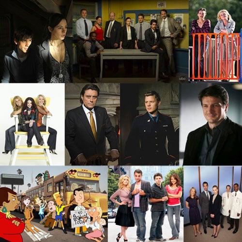 2009 Spring TV Shows