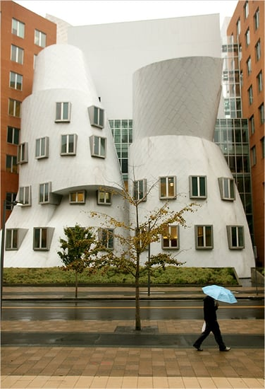 This Just In: MIT Sues Frank Gehry