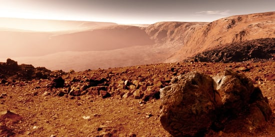 We Might Actually Be Able To Grow Food On Mars That's Safe To Eat