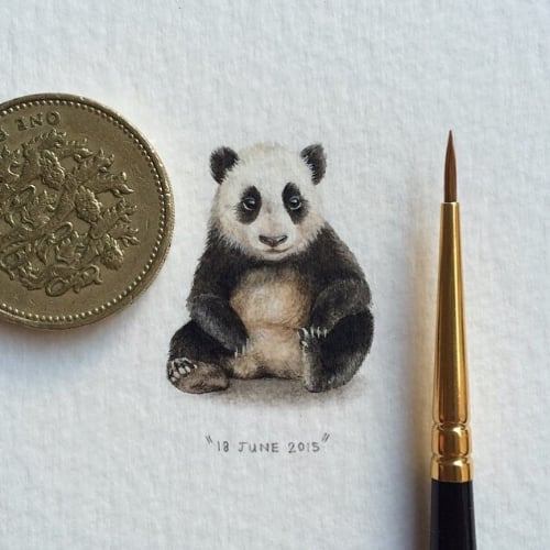 Woman Creates Art For Ants