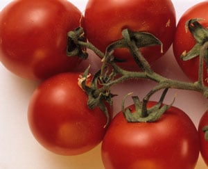 Why Eating Tomatoes Prevents Sunburn