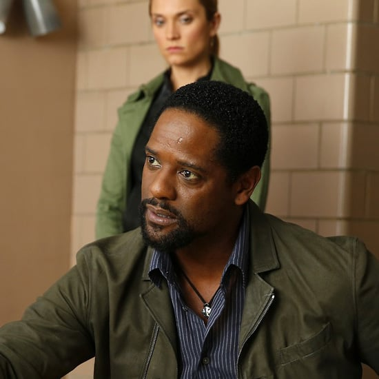 Ironside TV Show Review