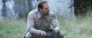 Where You've Seen Stranger Things' Chief Hopper Before